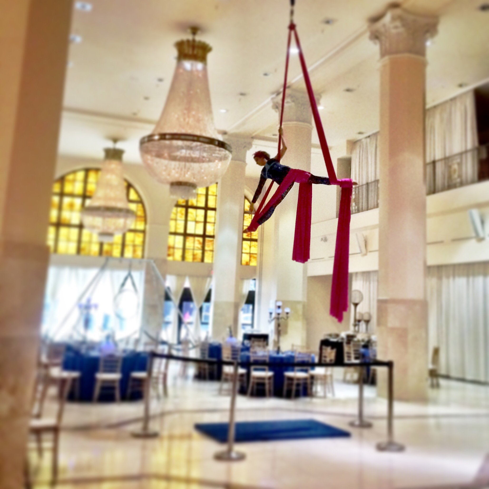 Yes. Aerialists.